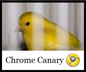 Lo canario google chrome es [la tecnología explicado]